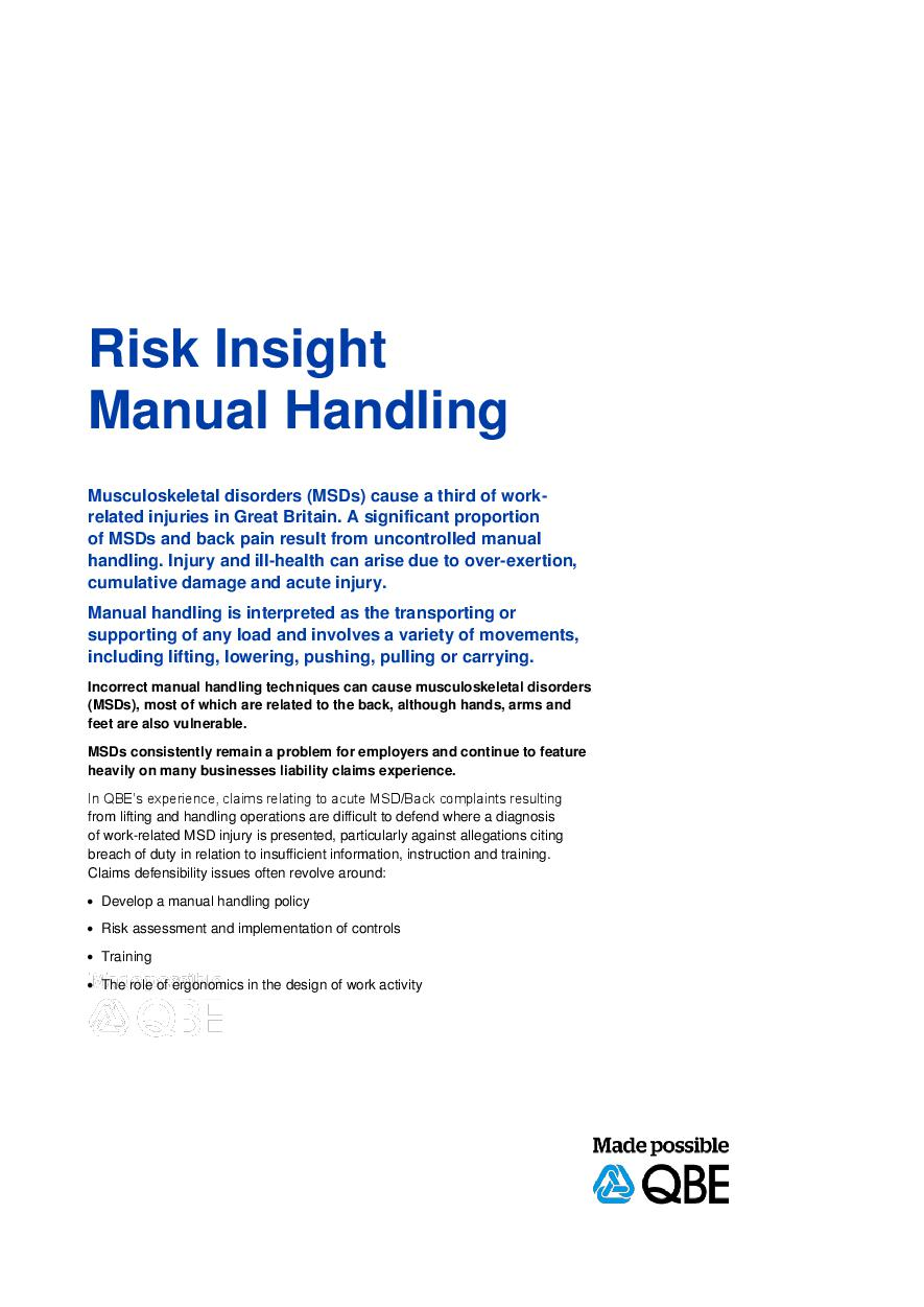 Risk Insight Manual Handling