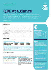 Click to download the QBE at a glance
