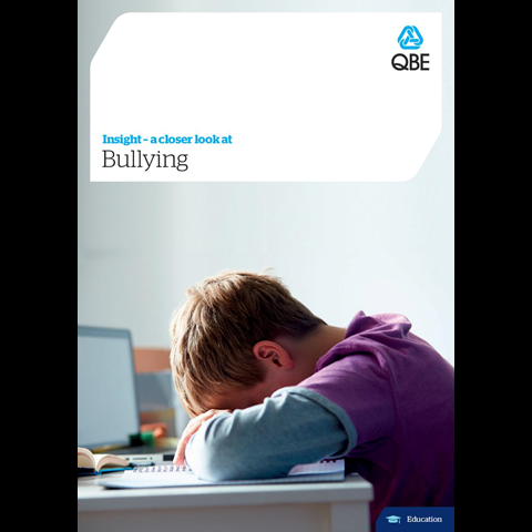 Bullying (PDF 2.1Mb)