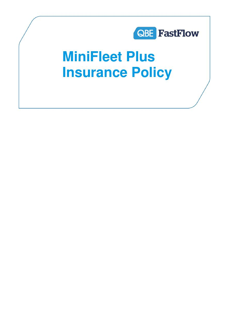 PMFP021014 MiniFleet Plus Insurance Policy (PDF 627Kb)