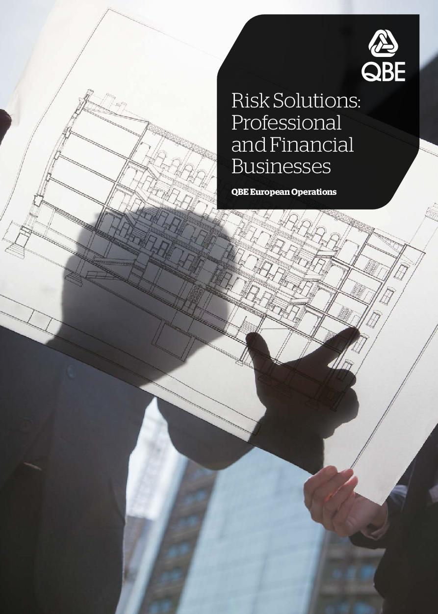 Risk Solutions: professional and financial businesses (PDF 425Kb)